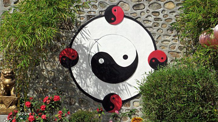 Teoría del Yin Yang