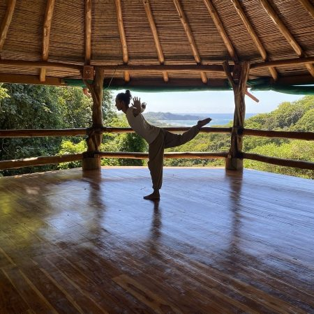 5 animals Qigong course in Nosara Costa Rica